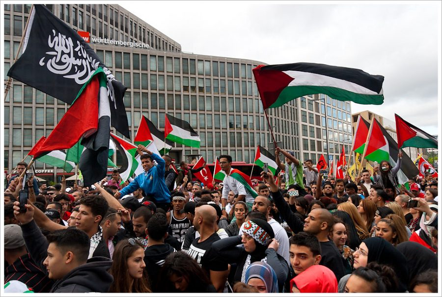 """The Fight for a """"Free Palestine"""""""